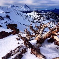 Winter in the Cascade Mountains in Central Oregon ------------------------ @ariintheair