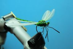 Dragonfly - step by step
