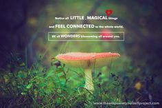 Notice all little magical things around you today! <3