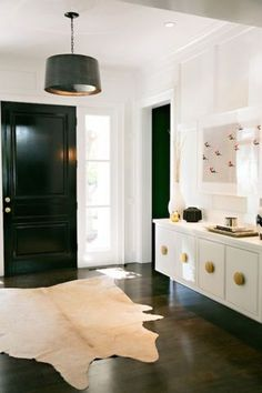 lacquered furniture & door
