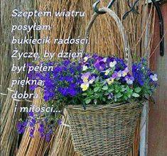 Motto, Good To Know, Humor, Plants, Polish, Good Morning Funny, Humour, Moon Moon, Flora