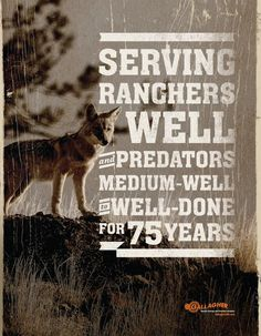 Ad for electronic fences for ranchers.