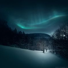 Winter Aurora