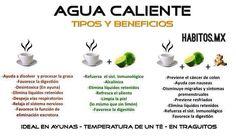 Beneficios agua caliente