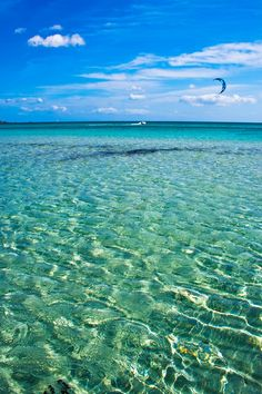 Sandy Beach Transparent Water Sea Sardinia Stock Photo (Edit Now) 20852614 Rome Travel, Italy Travel, Italy Vacation, Vacation Spots, Vacation Packages, Places To Travel, Places To See, Travel Destinations, Italy Holidays