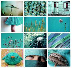 Google Afbeeldingen resultaat voor http://wonen.blogo.nl/files/2010/06/turkoois.jpg