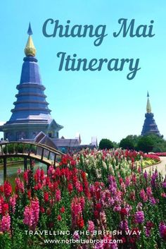 Everything you need to know to plan your trip to Chiang Mai including how to get there, where to stay, things to do and things to avoid.  #chiangmai #thailand #chiangmaiitinerary #northernthailand #chiangmaioldcity