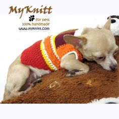 Small dog warm sweater puppy clothes handmade crochet cotton by myknitt #myknitt #handmade #diy #crochet #puppy #smalldog #teacupdog #tinydog #doggie #dogcouture #dogfashion #petfashion