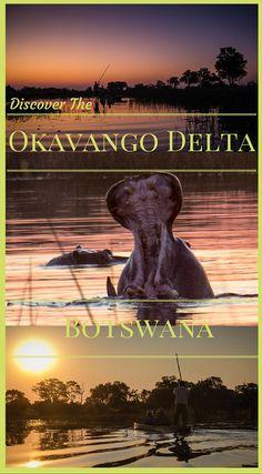 Discover the Okavango Delta Botswana Africa. http://www.divergenttravelers.com/bush-camping-okavango-delta-botswana/