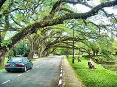 Taman Tasik Taiping in Taiping, Perak by Mohammad Khairul B. Taiping, Show Us, Paradise, Country Roads, City, Cities, Heaven