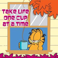 Get the full Jim Davis and Garfield the cat experience in Fairmount, Indiana and surrounding cities, such as Marion, Gas City and Upland, Indiana. Visit the Garfield Trail. Garfield Cartoon, Garfield And Odie, Garfield Comics, Garfield Quotes, Coffee Latte, I Love Coffee, Coffee Break, Coffee Time, Drink Coffee