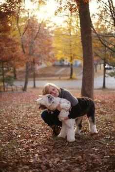 © Jaimee C Photography  Old English Sheepdog