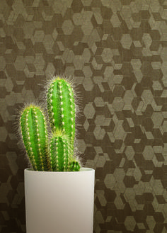 Pearlescent, Vinyl, Vinyl Wall Covering, Bevel, Honeycomb