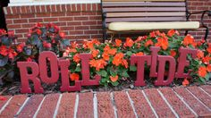Spirit Yard Signs- Roll Tide!  I think I'll do this at the end of my driveway!