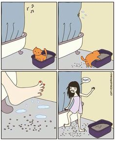 Cat making a mess . You mad, master? You clean? I think not!