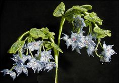 Boa's Botanicals - Fairy Flowers