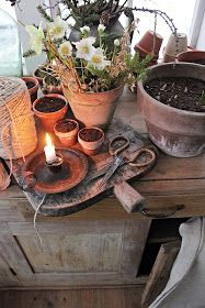 Choosing The Best Flowers for Your Lovely Spring - Onechitecture Diy Flowers, Flower Pots, Vibeke Design, Potting Sheds, Shed Design, Easy Garden, Garden Ideas, Winter House, Terracotta Pots