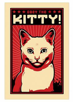 Obey The Kitty. and like OMG! get some yourself some pawtastic adorable cat apparel!