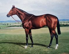 Storm Bird, champion 2YO in Ire, and sire of Storm Cat and Summer Squall