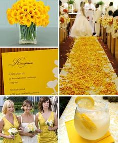 Spring Cheer, Daffodil Days & Yellow Themed Weddings | The ever rambling thoughts of Suzan McEvoy