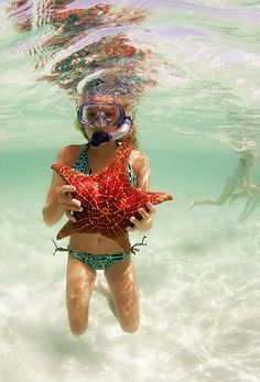 Snorkeling is a fun summer time thing to do.