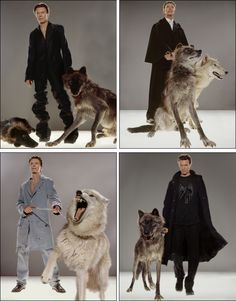 Pictures of David Bowie and wolves. You're welcome.
