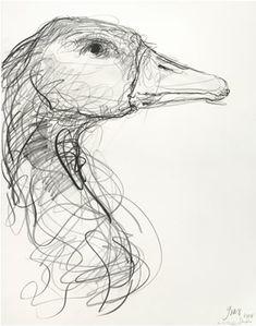 Bird Drawings, Art Drawings Sketches, Animal Drawings, Art Postal, Scribble Art, Bird Sketch, Observational Drawing, Charcoal Art, Arte Sketchbook