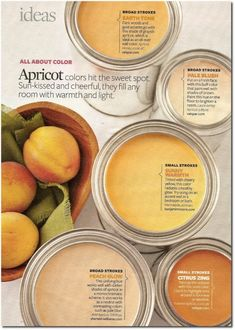 Paint colors in shades of apricot...
