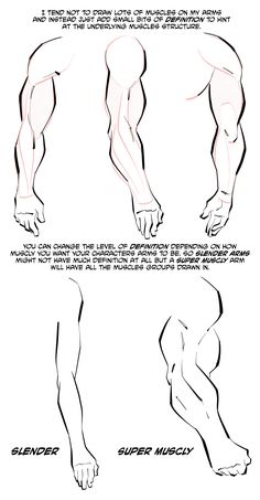 How to Draw Arm Muscles Arm Drawing, Drawing Base, Arm Muscles, Anatomy Reference, Human Anatomy, Drawing People, Persona, Pokemon, Drawings
