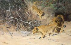 Wilhelm Kuhnert A Pride of Lions on the Prowl x 148 cm) Wildlife Paintings, Wildlife Art, Animal Paintings, Animal Drawings, Big Cats Art, Cat Art, Animal Painter, African Life, Biology Art