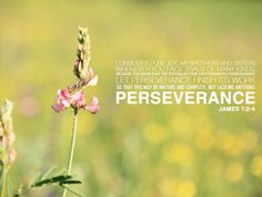 """""""Consider it pure joy, my brothers and sisters, whenever you face trials of many kinds, because you know that the testing of your faith produces perseverance. Let perseverance finish its work so that you may be mature and complete, not lacking anything.""""  James 1:2-4"""