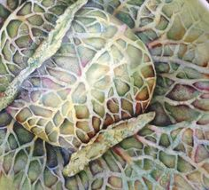 Cabbage painted on Porcelain by Mark Jones