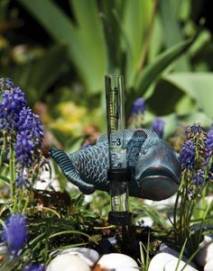 """Fish Decorative Rain Guage by Outdoor Decor. $7.81. Made of polystone, metal and glass.. 5.25"""" L x 4.5"""" W x 9"""" H. Decorative and Practical. Great for yourself or as a gift!. From the Garden Stake Collection.. For those who want to know how much rain sensitive plants are receiving or for those who just want a cute garden accessory, this fish rain gauge is perfect for you. The fish, curling his body his body around the rain gauge, is colored black with teal highligh..."""