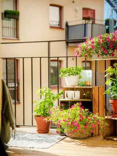 Potted plants and wooden crates accessorize this small balcony.