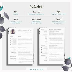 cv templates 61 free samples examples format download free ...
