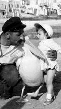 #Mykonos ,#pelican 1961. Mykonos Island Greece, Athens Greece, Old Time Photos, Old Pictures, History Of Photography, Greeks, Greek Life, Greek Islands, Santorini