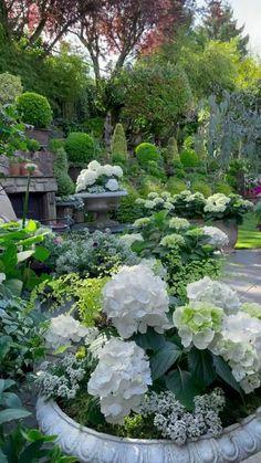 Garden Urns, Garden Yard Ideas, Garden Projects, Beautiful Flowers Garden, Beautiful Gardens, Landscape Design, Garden Design, White Plants, Gardening
