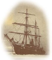 Then - Nimrod - 1865