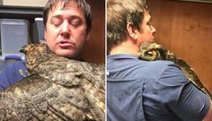 Owl Missed The Man Who Saved Her So Much She Couldn't Stop Hugging Him