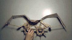 Rocketumblr | ianbrooks: Study in Bird Motion by Joyce Lin ...