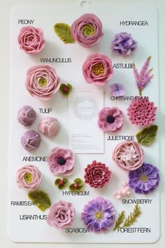 입속의 꽃 디플로라 표현할 수 있는 꽃들이 얼마나 있을까요? 봄날이 다가오고 하나 둘씩 피어나는 꽃들을 ...