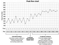 image relating to Peak Flow Chart Printable named 11 Simplest Height Stream Meters illustrations or photos within just 2014 Movement, Bronchial asthma, Top