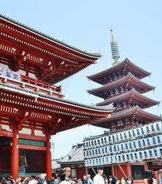 Guia turistico en Tokio, en español y privado. Contratar visita guiada a Tokio, un tour guiado acompañado de un guía turístico especializado en la ciudad. Tours, Cities