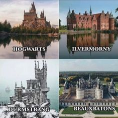 Harry Potter Theme, Harry Potter Facts, Harry Potter Quotes, Harry Potter Universal, Harry Potter Fandom, Harry Potter World, Slytherin, Severus Rogue, No Muggles