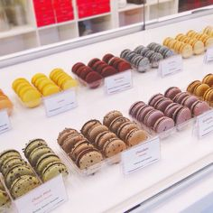Our crave-worthy Macarons display! French Cafe, Ketogenic Recipes, Mint Chocolate, Gelato, Macarons, Cravings, Place Card Holders, Display, My Favorite Things