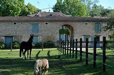 Nous vous proposons d'accueillir également vos chevaux, pour un week-end         - de repos dans les prés,         - de balades en forêt,         - ou de galops sur la plage toute proche. Nous les logerons dans nos installations qui seront mises à votre disposition, pour le plus grand bonheur de nos amis équidés…