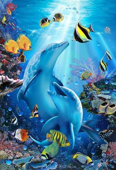 Enjoy curated Just for Fun and Sharing! Kiss in the Sea - Christian Riese Lassen - Artist Sea Life Art, Sea Art, Photo Dauphin, Sea Murals, Dolphin Art, Beautiful Sea Creatures, Underwater Painting, Image Chat, Water Animals