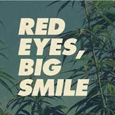 Image result for stoner quotes