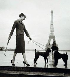 Audrey Hepburn- poodles & Eiffel tower, could it get more French?