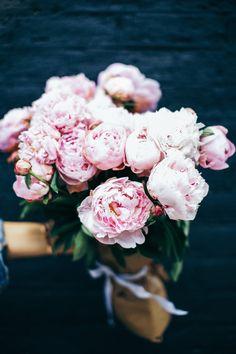 Pink Peonies, summer